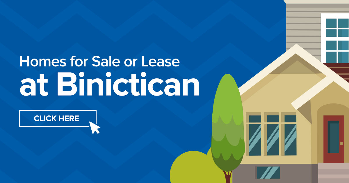 Real Estate Binictican