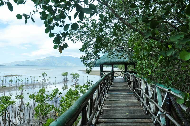 Eco Tourism