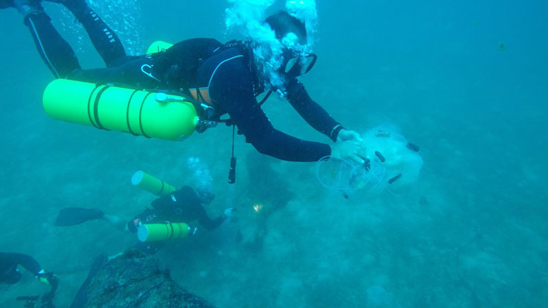 Fun diving activities at Subic Bay Freeport - Olongapo